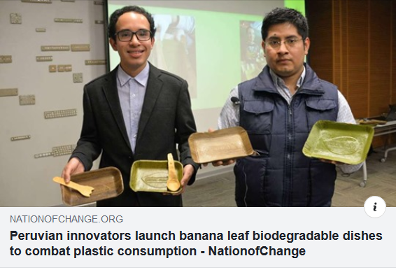 Banana Leafs biodegrade