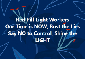 Red Pill Light Workers